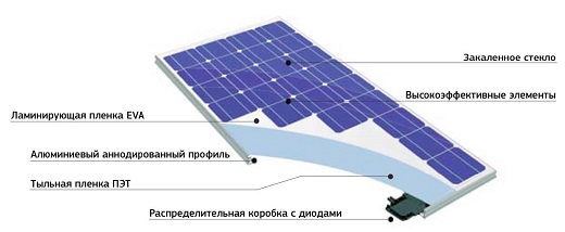 Batteri 'elettricisti' generano batterie naturali Energia